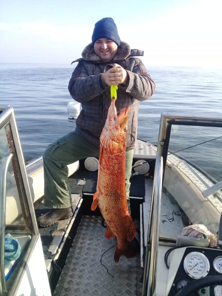 на щук крокодилов рыболовная база Черкасово рыбинское водохранилище 768x1024 - Рыбалка